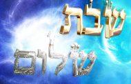 3. Hilkhot Shabbath - Cours N°3 du 25 mai 2014 - Rav M. Saksik