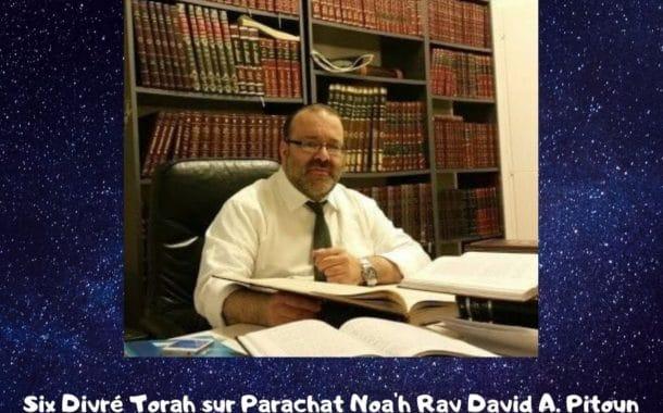 Divré Torah Parachat Noa'h Rav David Pitoun