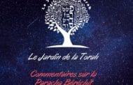 Paracha Béréchit - Jardindelatorah