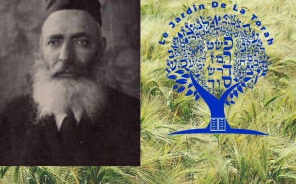 Paracha Noa'h Rabbi Yérouham Même le roi est dans la dépendance des champs