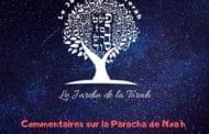 Parachat Noa'h - Jardindelatorah