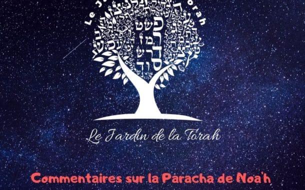 Parachat Noa'h - Jardindelatorah Ben Ich Hay