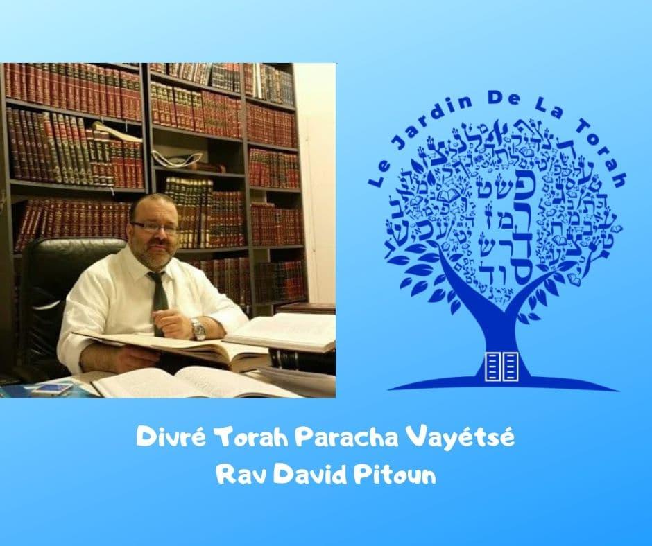 Divré Torah Paracha Vayétsé. Rav David Pitoun