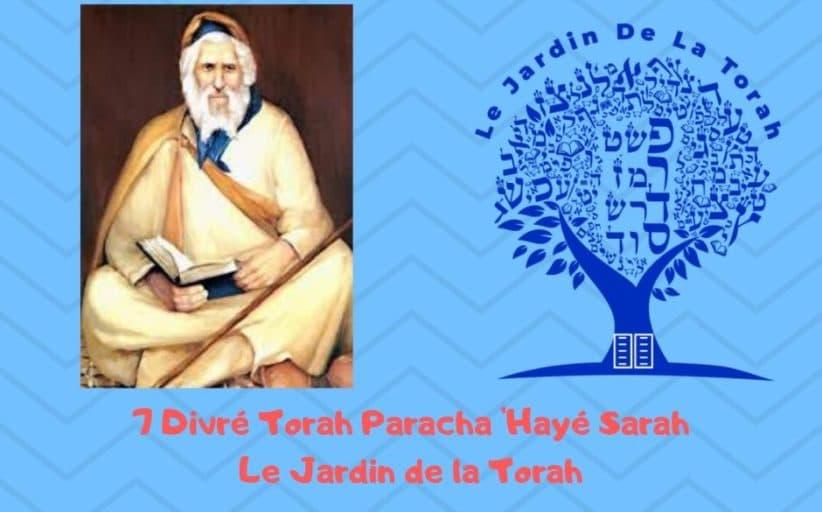 Paracha 'Hayé Sarah 7 Divré Torah par Jardindelatorah