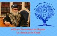 Paracha Vayéra - 6 Divré Torah par Jardindelatorah