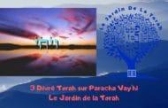 Paracha Vay'hi - 3 Divré Torah par Jardindelatorah