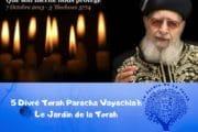 Paracha Vaychla'h 5 Divré Torah par Jardindelatorah