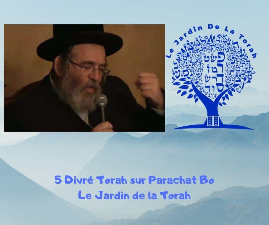 Paracha Bo - 5 Divré Torah par Jardindelatorah