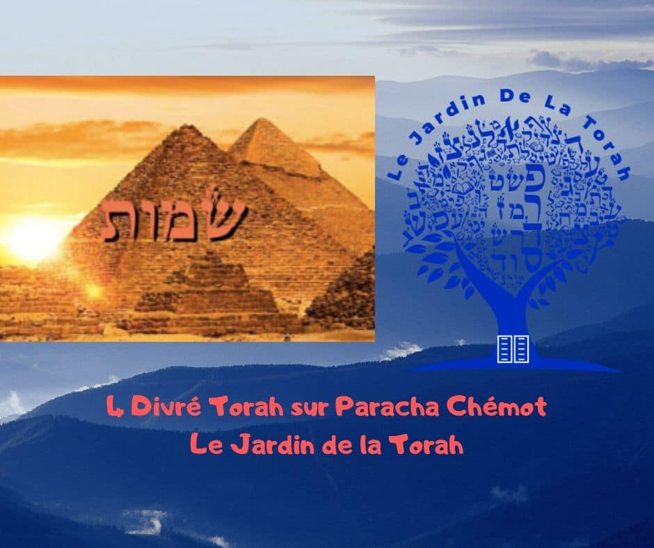 Paracha Chémot - 4 Divré Torah par Jardindelatorah