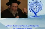Paracha Michpatim - 4 Divré Torah par Jardindelatorah