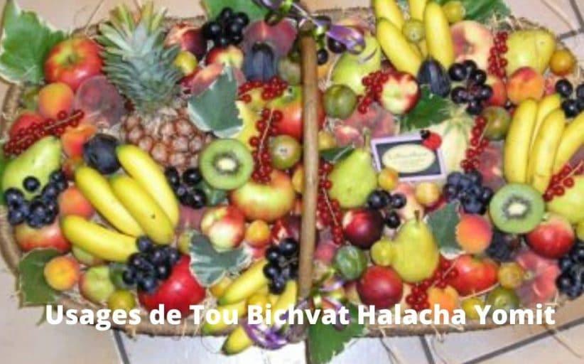 Usages de Tou Bichvat - Halacha Yomit