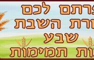 La Mitsva du compte du 'Omer. 5.Étude des lois du compte du 'Omer (4) Yalkout Yossef - Yéhouda Berros