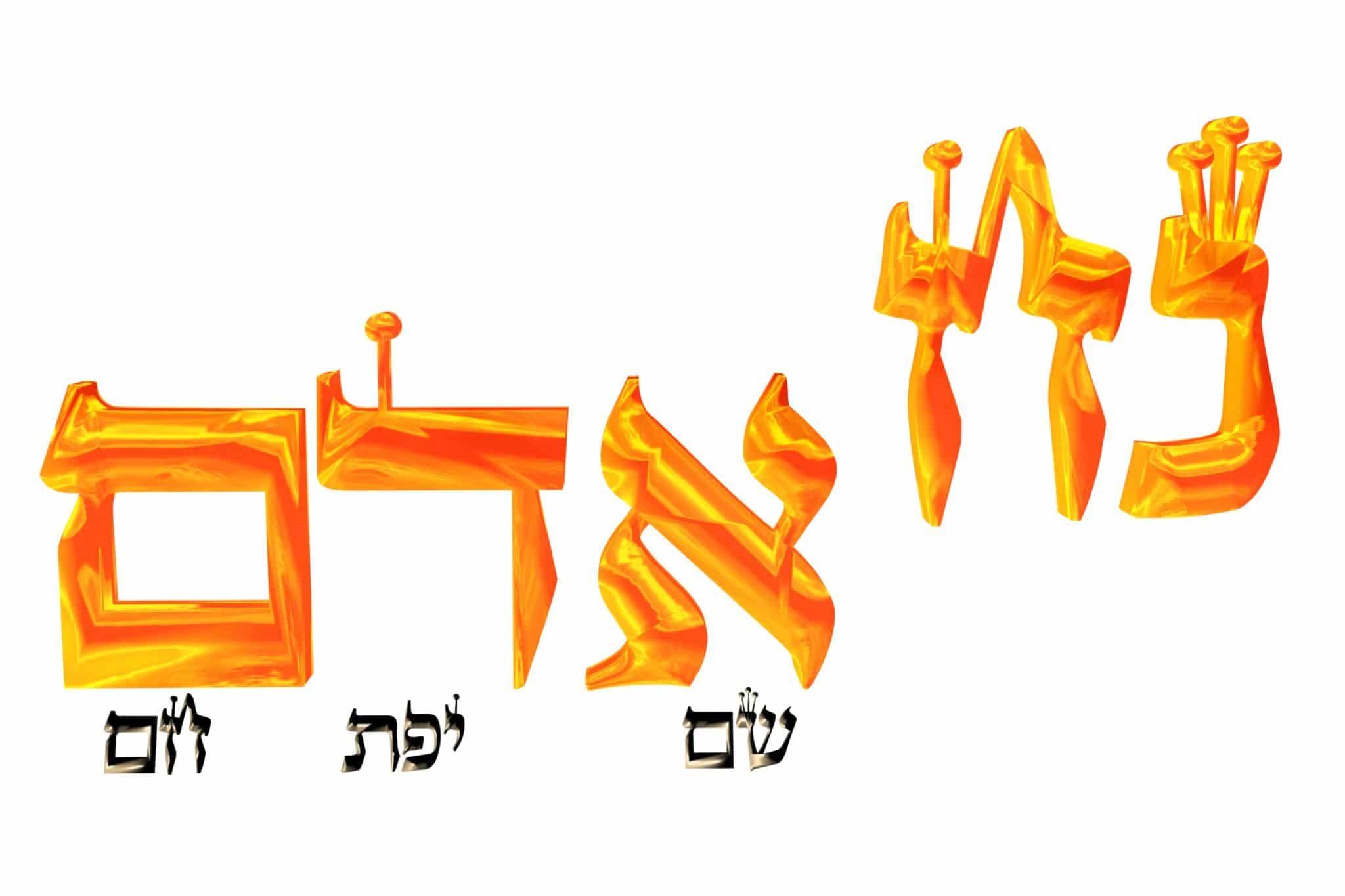 La Torah selon le Malbim - Parachat Noah