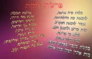 Parashat Houkat (5775) - Yéhouda Moshé Charbit