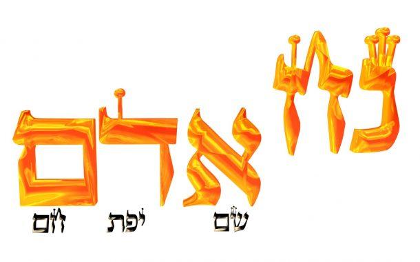 Parashat Noah  5775 -  Yéhouda Moshé Charbit