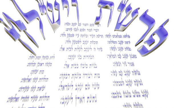 Parasha Vayshla'h Yéhouda Moshé Charbit (5775)