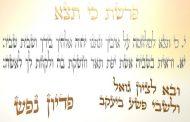 Parachat Ki Tétsé (5775) - Y. M. Charbit