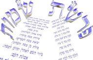Parashat Shémot (5775) - Yéhouda Moshé Charbit