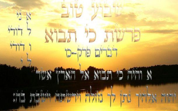 Parashat Ki Tavo 5775 - Yéhouda Moshé Charbit