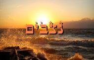 Parashiyot Nitsavim - Vayelekh - Yéhouda Moshé Charbit