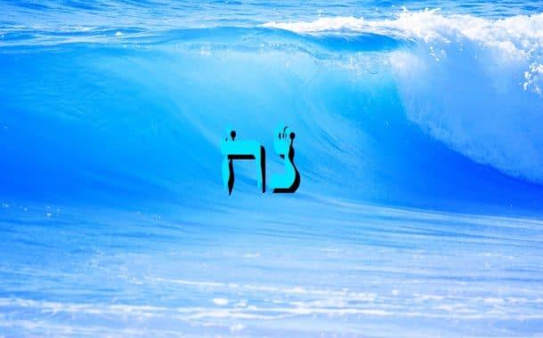 Parashat Noa'h  5774 Yéhouda Moshé Charbit