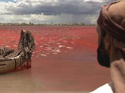 Première plaie : Plaie du sang - Le Malbim