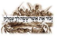 Parashat Tétsavé (5775) - Yéhouda Moshé Charbit