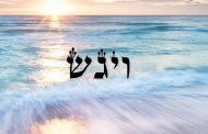 Divré Torah Paracha Vaygach - Réouven Carceles