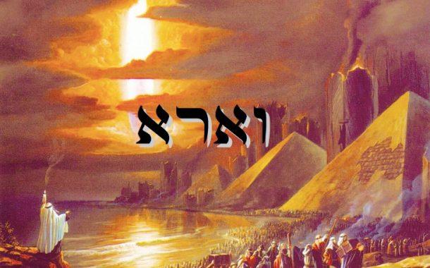 Parashat Vaéra (5776) - Yéhouda Moshé Charbit