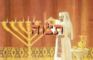 Divré Torah Parashat Tétsavé (5776) - Yéhouda Moshé Charbit