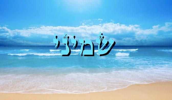 Divré Torah Parashat Chémini - 5778 - Y. M. Charbit