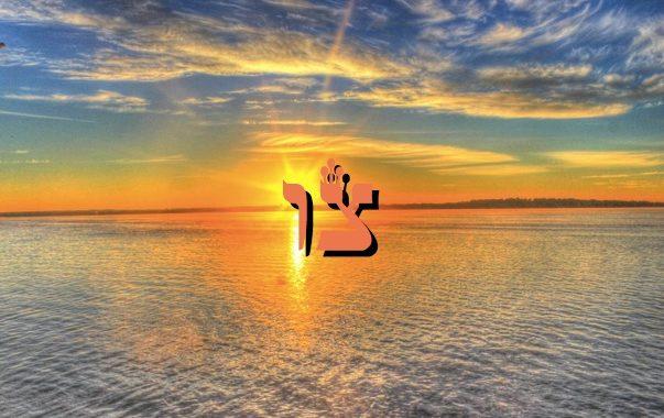 Parashat Tsav - Préparation à Pessa'h : Zéra Chimchon. Par Michel Baruch
