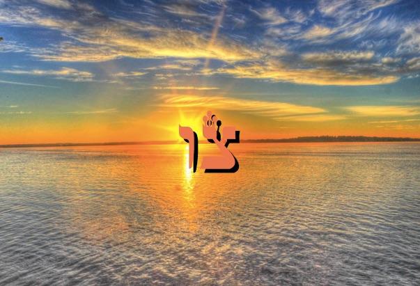 Une grande leçon de dévouement ! Zera Chimchon - Paracha Tsav - Michel Baruch