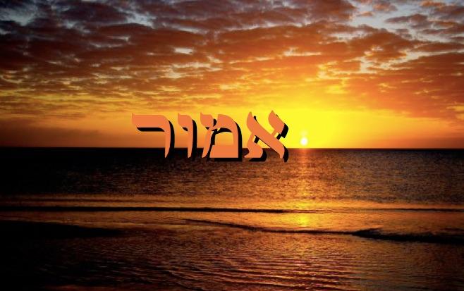 Parashat Emor - 5776 - Yehouda Moshé Charbit