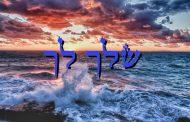 Parashat Shéla'h Lékha - 5776 - Yéhouda Moshé Charbit