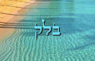 Divré Torah Parashat Balak - 5778 - Y. M. Charbit