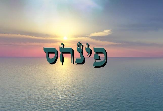 Parachat Pin'has - 5777 - Yéhouda Moshé Charbit