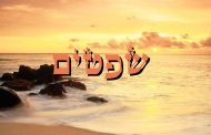 Parashat Shofétim - 5776 - Yéhouda Moshé Charbit