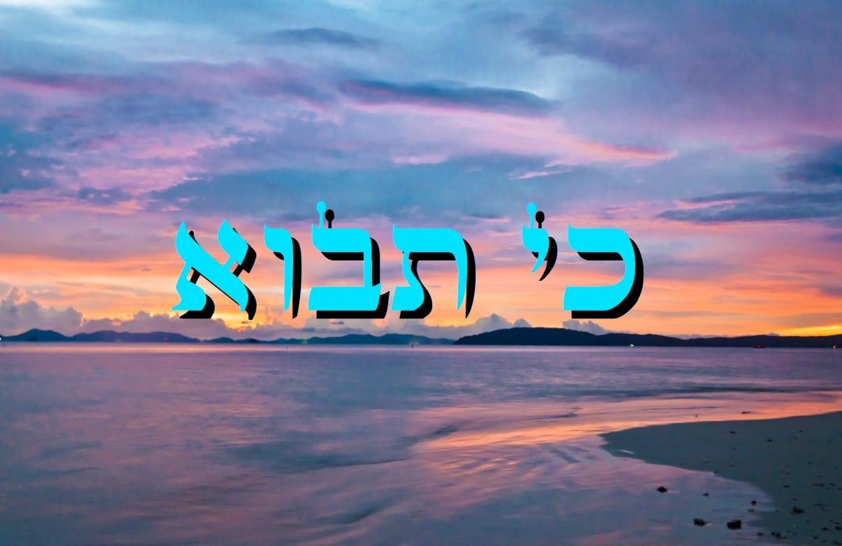 Parashat Ki Tavo - 5776 - Yéhouda Moshé Charbit