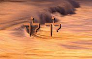 Parashat Lekh Lékha - 5777 - Yéhouda Moshé Charbit