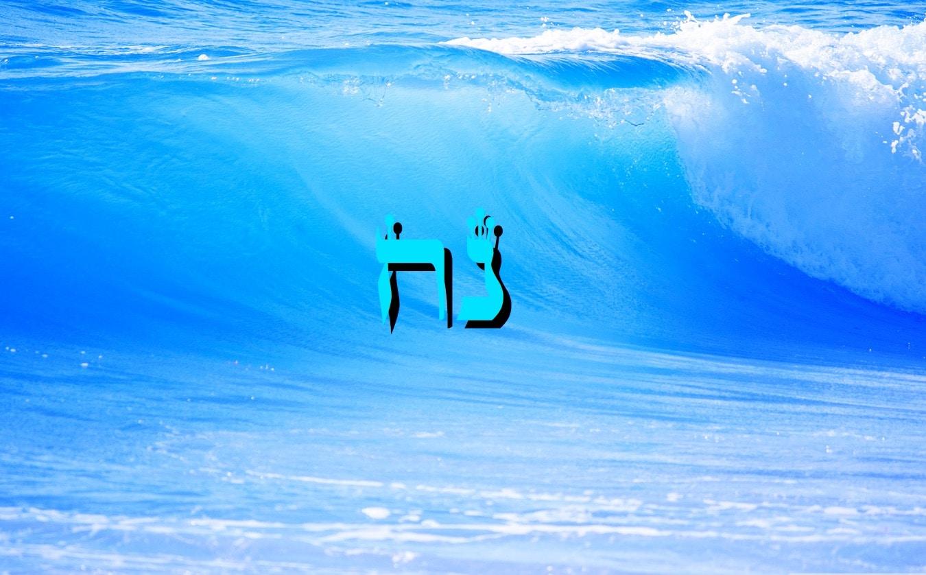 Parashat Noa'h - 5777  Yéhouda Moshé Charbit
