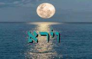 Parashat Vayéra - 5777 - Yéhouda Moshé Charbit