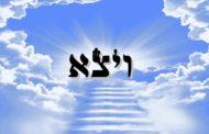 Des ténèbres jaillira la splendeur et la magnificence de Yaakov - Zera Chimchone Parachat Vayétsé - Michel Baruch