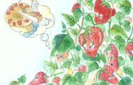 Le Chabbat de Yéhoudit-fraisette