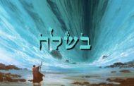 Divré Torah Parachat Béchala'h - 5777 - Yéhouda Moshé Charbit