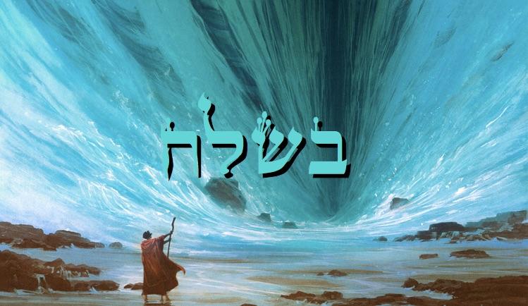 La vraie confiance en Hachem - Paracha Bechalla'h - Réouven Carceles