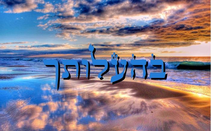 Divré Torah Parachat Béhaalotékha - 5777 - Yéhouda Moshé Charbit