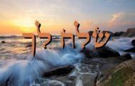 Parashat Chéla'h Lékha - 5777 - Yéhouda Moshé Charbit