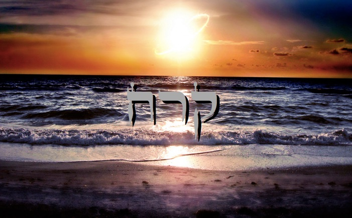 Parachat Kora'h - 5777 - Yéhouda Moshé Charbit