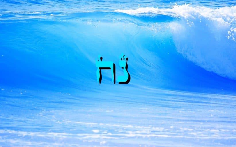 Parachat Noa'h - 5778 - Yéhouda Moshé Charbit